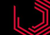 Vega Iconography